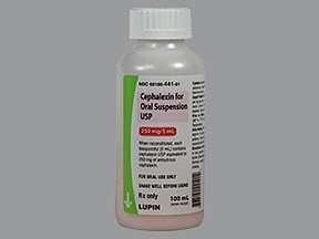 cephalexin 250 mg/5 mL oral suspension