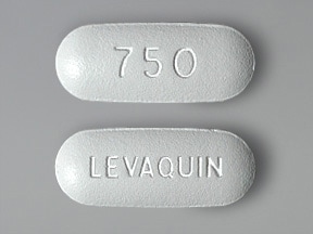 Levaquin 750 mg tablet