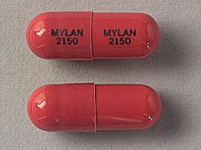 meclofenamate 50 mg capsule