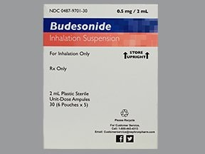 budesonide 0.5 mg/2 mL suspension for nebulization