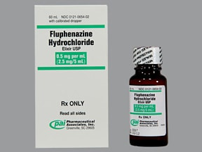 fluphenazine 2.5 mg/5 mL oral elixir