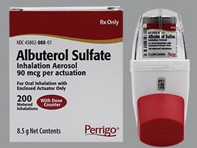 Does albuterol sulfate have a steroid in it gold dragon youngling 5e
