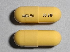 "This medicine is a yellow, oblong, capsule imprinted with ""AMOX 250"" and ""GG 848""."