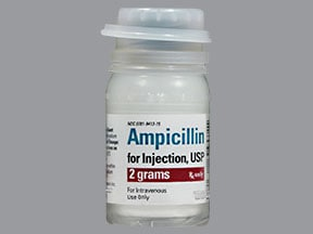 ampicillin 2 gram intravenous solution