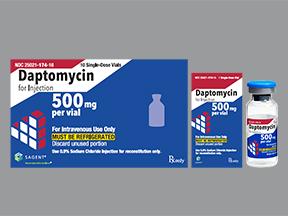 daptomycin 500 mg intravenous solution