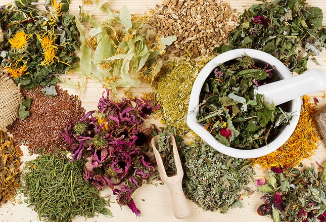 9 Herbal Supplements Cancer Patients Use: Current Research