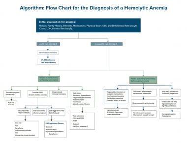 Diagnosing Anemia Flowchart Flowchart In Word