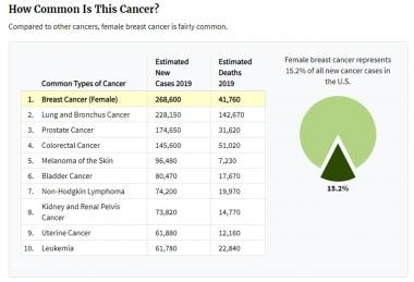 Breast cancer epidemiology and risk factors. 2019