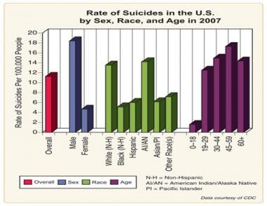 Rate of suicides in the United States by sex, race