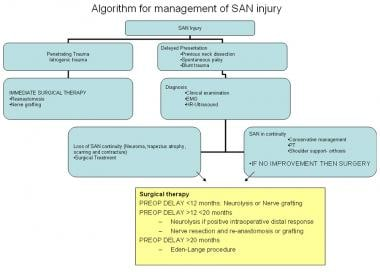 Algorithm for management of spinal accessory nerve