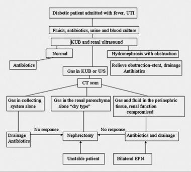 Algorithm for the management of emphysematous pyel