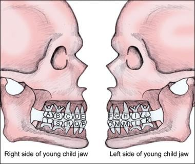 Lettering for children's teeth.