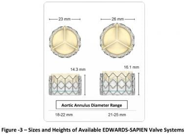 Transcatheter aortic valve replacement (TAVR). Siz