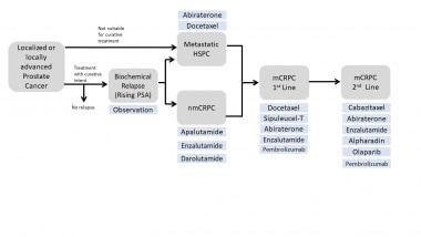 A prostatarák patológiája