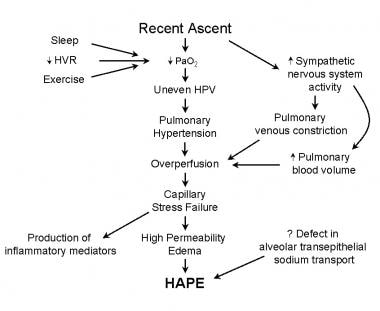 This image shows the pathophysiology of high-altit