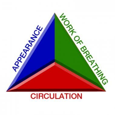The Pediatric Assessment Triangle (PAT).