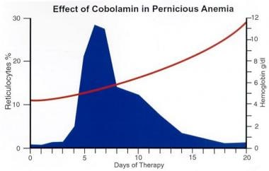 Response to therapy with cobalamin (Cbl) in a prev
