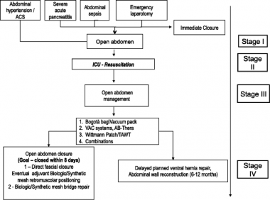 Schematic flowchart for treatment of open abdomen.
