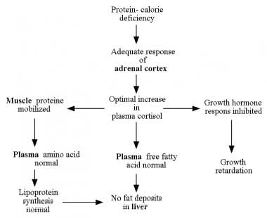 Hormonal adaptation to the stress of malnutrition.