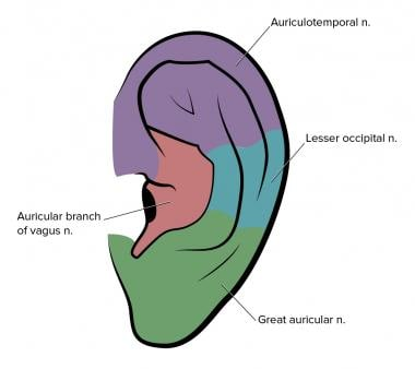 Ear Anesthesia: Overview, Indications, Contraindications