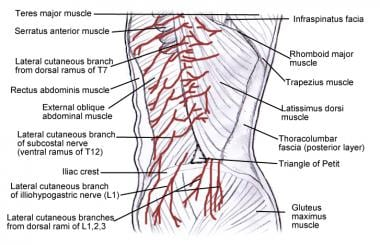 Transversus Abdominis Plane Block: Background, Indications