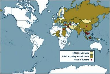 Global map of countries where avian influenza (bir