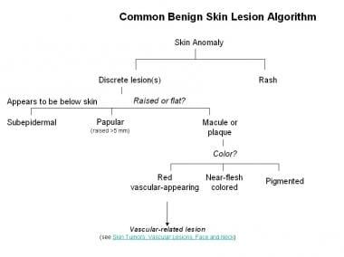 Common benign skin lesion algorithm. (Concept and