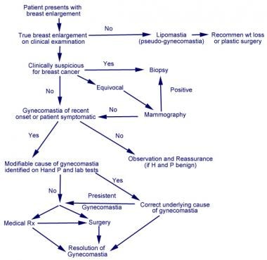 Suggested algorithm for the management of gynecoma