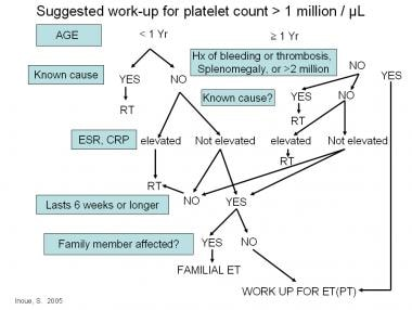 Algorithm for thrombocytosis workup and potential