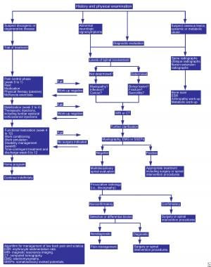 Algorithm for the management of low back pain and