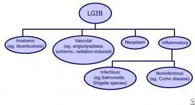 Types of lower gastrointestinal bleeding (LGIB).