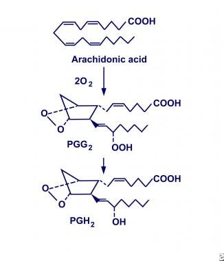 Cyclooxygenase conversion of arachidonic acid into