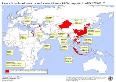 Countries where avian influenza has been reported.
