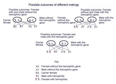 Possible genetic outcomes in individuals carrying