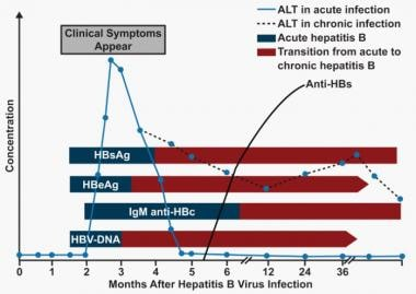 Serologic course of hepatitis B virus (HBV) infect