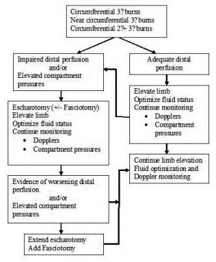 Decision-making algorithm for escharotomy in sever