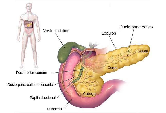Aumento y perdida de peso y dolor abdominal