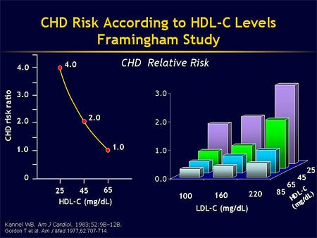 Has HDL, the 'good' cholesterol, been hyped? -- ScienceDaily