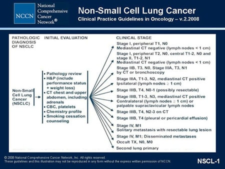 Nccn Non Small Cell Lung Cancer Guidelines Update Slides