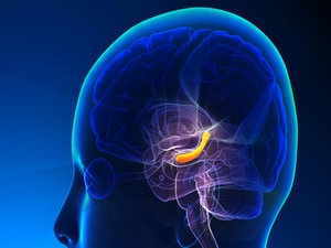 New Radiation Technique Preserves Cognition During WBRT