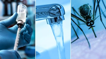 Infectious Diseases - Medscape