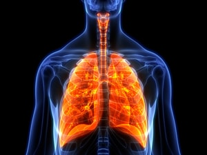 Confirmed: OS Better With Immunotherapy in Small Cell Lung Cancer