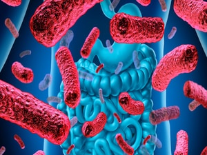 'Intriguing Changes' in Gut Bacteria After MS Treatment