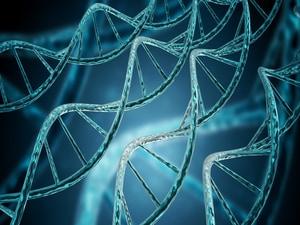 Evinacumab Offers 'Remarkable' Lipid Lowering in Severe HoFH
