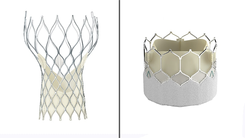 TAVR Valves Compared, and Other Lessons on the Management of AS