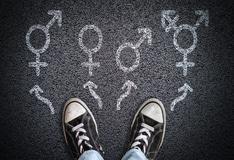 Gender Identity: Definitions, Development of Gender Identity - Usual