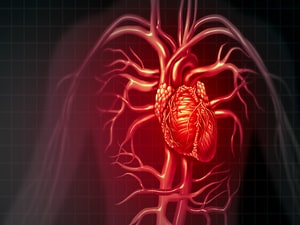 LAMAs Are Safe Irrespective of Cardiovascular Risk in COPD
