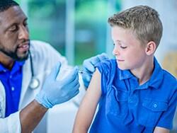 male papillomavirus vaccine
