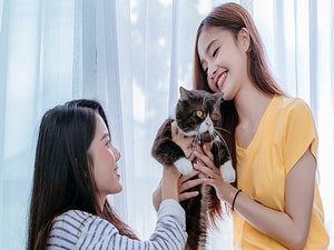 More Than One Way to Fix Cat Allergy