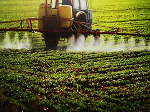 Gene Variants May Affect PD Risk After Pesticide Exposure